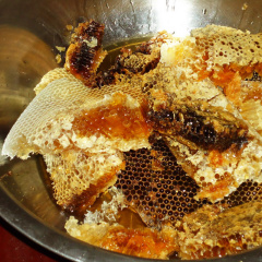 贵州深山土蜂蜜纯正天然农家自产