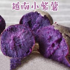 越南进口小紫薯5斤 新鲜番薯现挖迷你地瓜红香薯紫包邮
