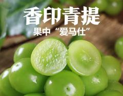 贵州毕节阳光玫瑰香印青提新鲜无籽葡萄水果