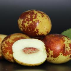 【新鲜水果】山东沾化冬枣 4.8-5.2斤装 大果   新鲜上市