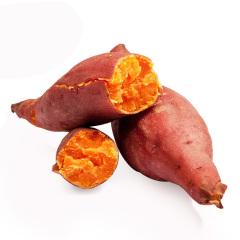 边走边淘 福建漳州六鳌红薯 5斤 包邮