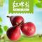 """可以""""喝""""的梨子 山西运城红啤梨 吃软不吃硬 农家种植 鲜甜多汁"""