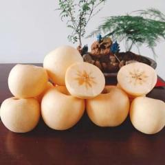 【峻农果品】烟台栖霞奶油富士苹果80--85mm净重5kg包邮