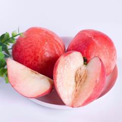 【新鲜水果】安徽砀山新鲜水蜜桃 中大果净重3斤装 单果150g以上