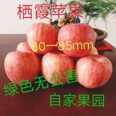 【峻农果品】烟台栖霞红富士苹果80—85mm特惠果22--24个净重10斤包邮包售后
