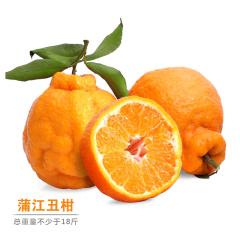 四川蒲江丑柑尝鲜组