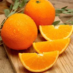 【橙中皇后】湖北秭归伦晚脐橙   9斤  产地直发  包邮