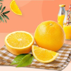 【进口水果】进口澳橙特级72# 5斤 (单果约250g)